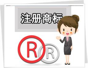 广东商标注册公司介绍